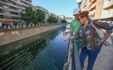 El Ayuntamiento de Granada pedirá a la CHG la renaturalización del río Genil