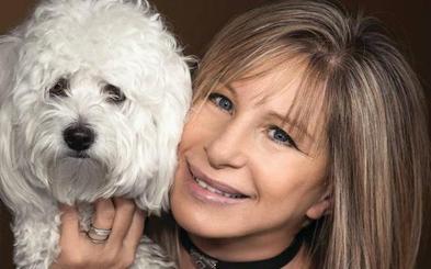 Barbra Streisand asegura que dos de sus perras son clones de una antigua mascota