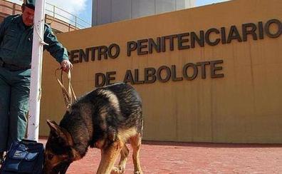 El traslado de presos de Albolote a Archidona se hará de forma escalonada