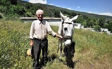 Un agricultor de la Alpujarra de 88 años de edad sigue trabajando en el campo para seguir viviendo de la forma más natural