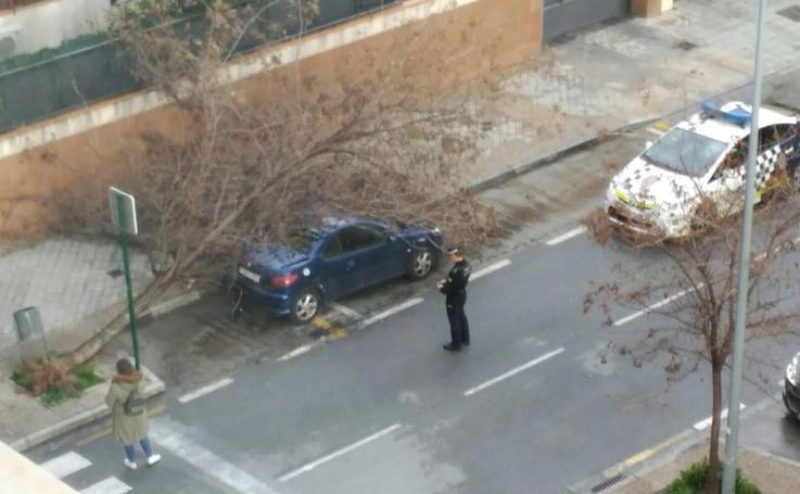 El viento y el granizo azotan a Granada capital