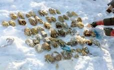 """""""Es nauseabundo"""": el misterio de las 54 manos humanas enterradas en la nieve"""