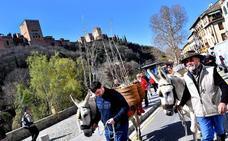 Los aguadores vuelven al Avellano
