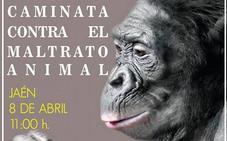 Caminata pacífica contra el maltrato animal en Jaén el próximo 8 de abril