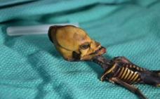 El extraño esqueleto 'alienígena' que desconcierta a los científicos: ¿qué esconde realmente?