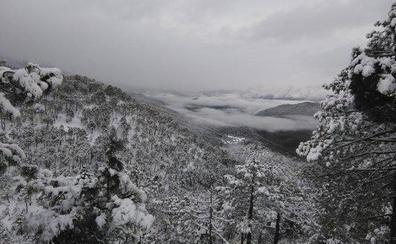 Aviso amarillo por nevadas y viento en Jaén