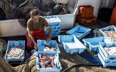 Los pescadores motrileños se 'asocian' con los de otras zonas
