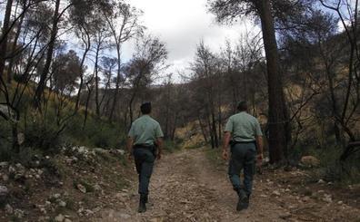 Arrestan a un hombre por mantener relaciones sexuales con una yegua y una potra en Mallorca