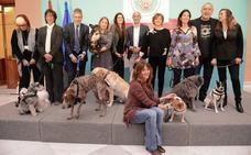Medio Ambiente pide «compromiso y responsabilidad» con los animales de compañía