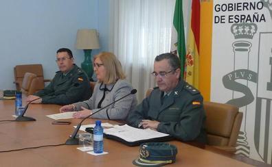 Los cinco pueblos de Jaén donde más aceituna se roba