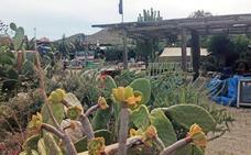 El 'Bar de Jo' busca 5.000 apoyos para defender su «lugar en la tierra»