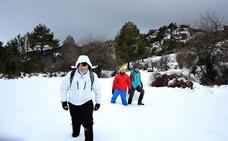 Los campos de Hernán Perea alcanzaron en febrero los -24,2 grados