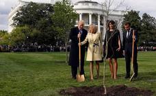 ¿Dónde está el árbol que plantaron Trump y Macron?