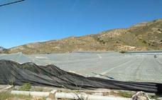 Cajamar lanza una línea de ayudas ante la granizada de ayer