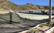 La Junta urge a los agricultores a declarar los daños en la Oficina Comarcal Agraria de La Mojonera
