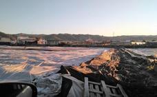 El PP pedirá en el Parlamento andaluz ayudas para los afectados por el granizo en el Poniente
