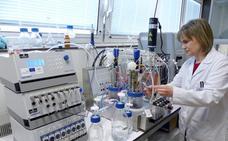Investigadores de la UJA trabajan en un modelo de biorrefinería sostenible para el aprovechamiento de la biomasa