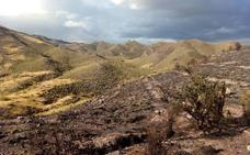 Controlado el incendio forestal de Tabernas