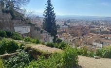 El Ayuntamiento de Granada da diez días a los propietarios de solares para que los limpien