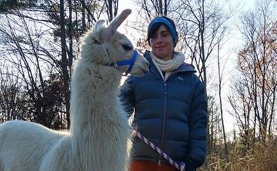 La magia del 'doctor Patas': logra que animales de todas las especies con problemas caminen de nuevo