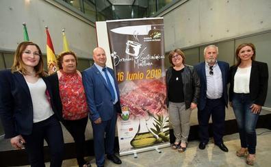 Montillana impulsa el óleo-turismo con una jornada que incluye poesías lorquianas