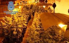 Provocan un incendio en Atarfe para eliminar los restos de una plantación de marihuana