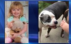 La heroica perrita que no se separó de una niña durante 36 horas desaparecidas y evitó su muerte