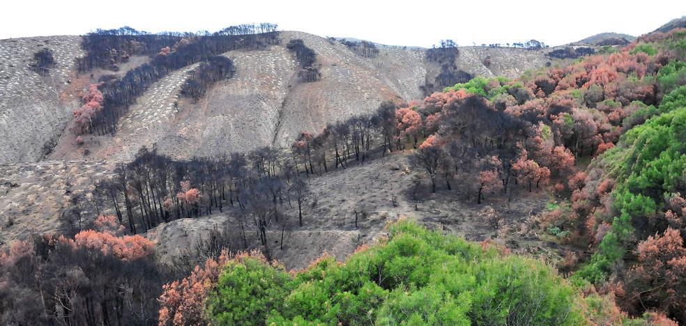 Defensores de la naturaleza para los premios 'Erosión Cero'