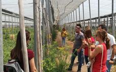 La Junta forma en producción ecológica a jóvenes con ayudas