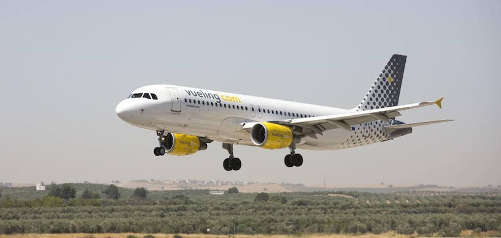 Un pájaro rompe un avión de Vueling en el aeropuerto de Granada con destino a Barcelona