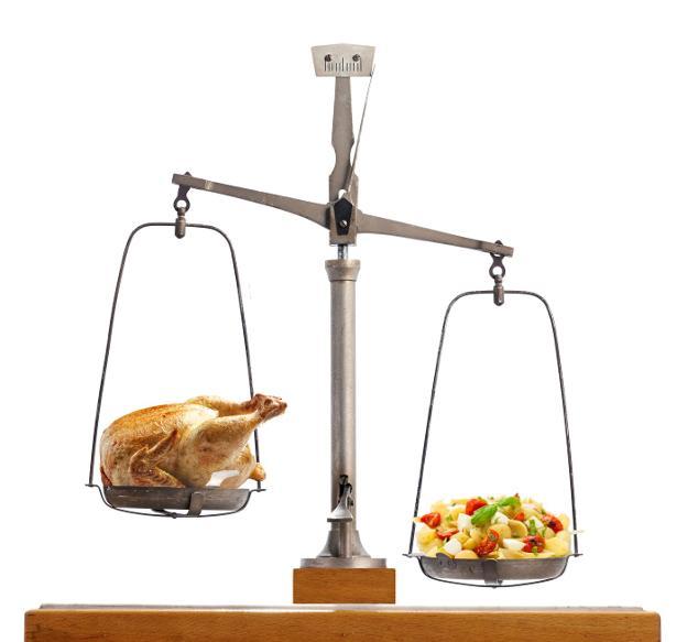 Distintos tipos de dietas para adelgazar