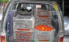 Sorprendidos en Huércal Overa, tras el hurto de frutas y verduras