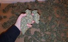 «Duermes con miedo de que entre la Policía o de morir en un incendio»: las declaraciones de una mujer que cultiva marihuana en su casa