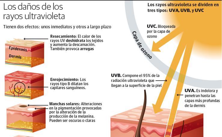 Los daños de los rayos ultravioletas