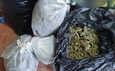 La Guardia Civil interviene casi 47 kilos de marihuana en dos actuaciones en Gójar