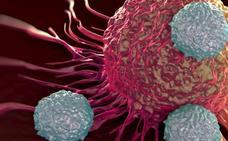 Última hora en la lucha contra el cáncer: investigadores españoles logran eliminar células tumorales durmientes