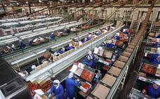 El descenso en los precios agrícolas aboca a Almería a reducir su saldo comercial un 17%