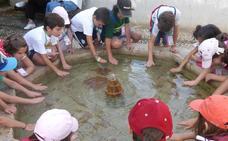 La Alhambra prolonga a agosto su programa educativo con talleres y visitas