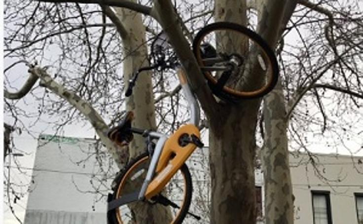 El vandalismo contra las bicis por el mundo