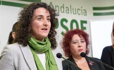 El PSOE reprocha a Amat que no cumpla lo acordado para defender al colectivo LGTBI
