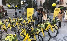 El Ayuntamiento de Granada prepara una ordenanza para regular el uso de la bici de alquiler y perseguir el vandalismo