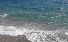 Las medusas invaden la orilla de la playa de Calahonda e impiden el baño