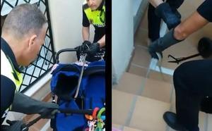 La Policía saca una culebra de más de un metro escondida en el carrito de un bebé