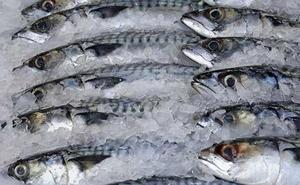 Los 4 alimentos congelados que los nutricionistas aconsejan por sanos