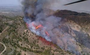 Uno de cada cuatro incendios forestales se produce en Almería