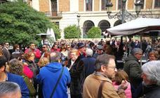 Piden que se investigue si hay aves protegidas nidificando en las obras de la plaza Deán Mazas de Jaén