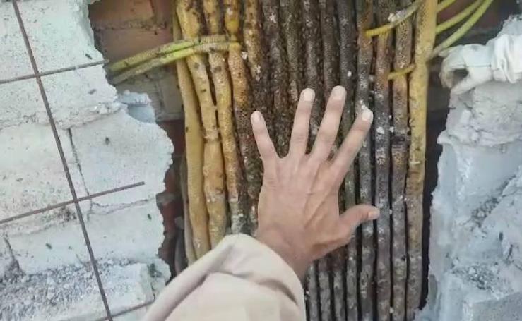 Así es el mayor enjambre de abejas retirado en Granada