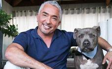 La dura historia de César Millán, el encantador de perros