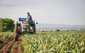 Agricultores y ganaderos pactan un frente común para lograr una PAC «fuerte y justa»