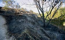 Controlado el incendio forestal del pantano de Cubillas